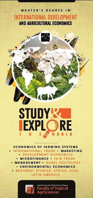 master thesis in international development