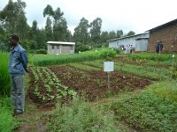 FTA Training Centre for farmers in Ethiopia