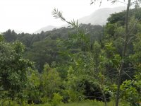 10.	Wondo Genet College of Forestry and Natural Resources.