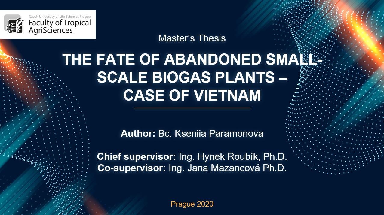 Master thesis biogas